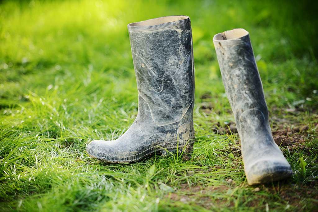 farm boots - CITA membership