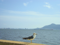 七重浜海岸