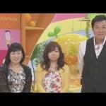 [維新]石井苗子出演「リンゴの国会に行こう!」2017.5.27