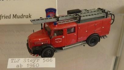 steyr586