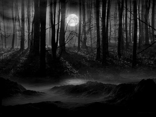 gothic setting  u2013 edutronic