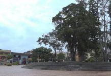 gobernador_municipios_de_antioquia