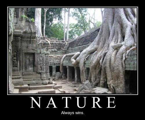 nature always win