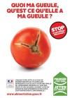 tomate gaspi