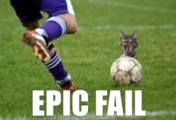 epic cat fail