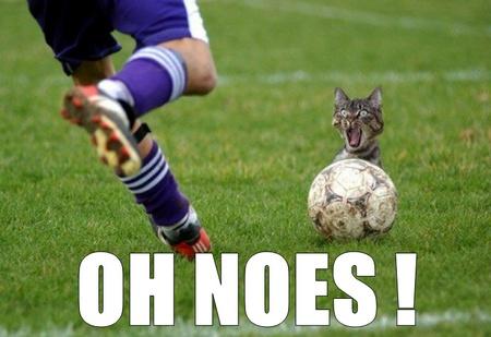 oh noes