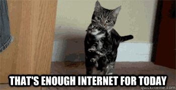 cat enough internet
