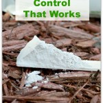 Use diatomaceous earth organic for a non-chemical green pest control solution that works and is harmless to pets and wildlife. It's super inexpensive too! www.H2OBungalow.com #organicpestcontrol #green #greenpestcontrol