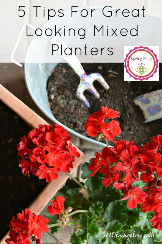 5 tips for beautiful mixed planters. Follow these simple rules of mixed plantings and you'll be rewarded with a long growth season and full healthy plants. H2OBungalow