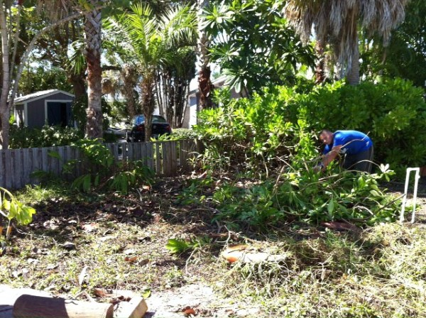 diy-butterfly-garden-yard-before-H2OBungalow