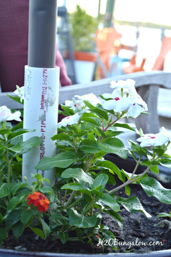 DIY-planter-umbrella-stand-made-from-pvc-pipe-H2OBungalow