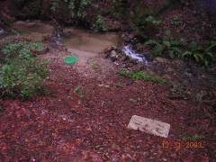 contaminated water on a ranch
