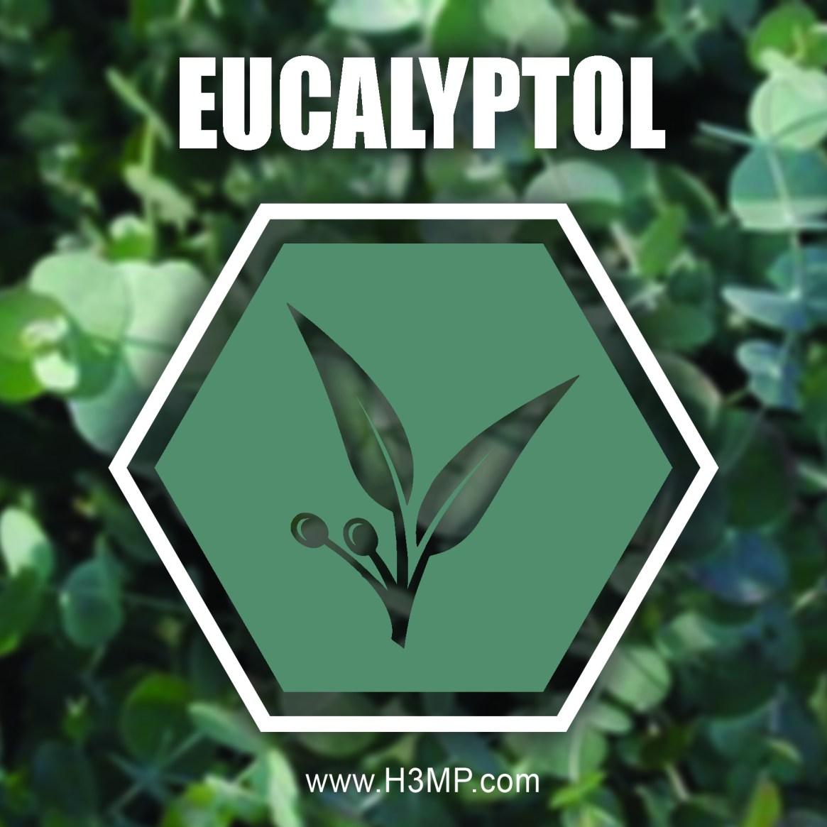 H3MP EUCALYPTOL