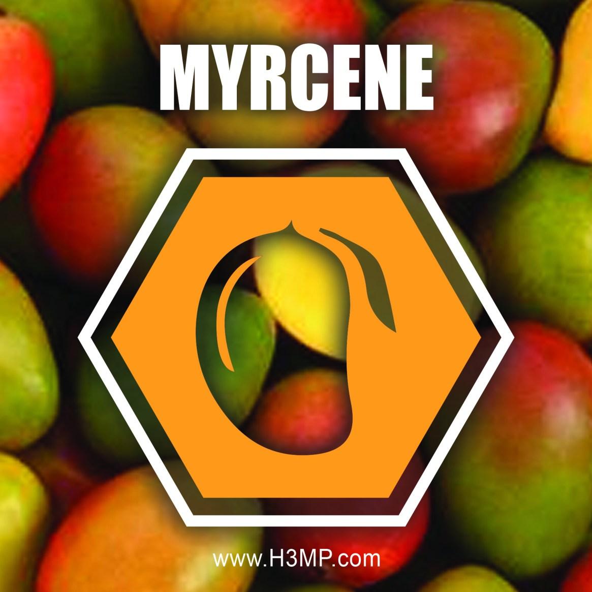 H3MP MYRCENE
