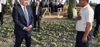 Новые правила для узбекских фермеров