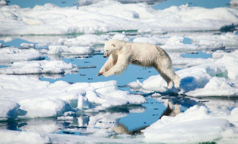 120 yılda deniz yüzey suyu sıcaklığı 1,1 derece arttı
