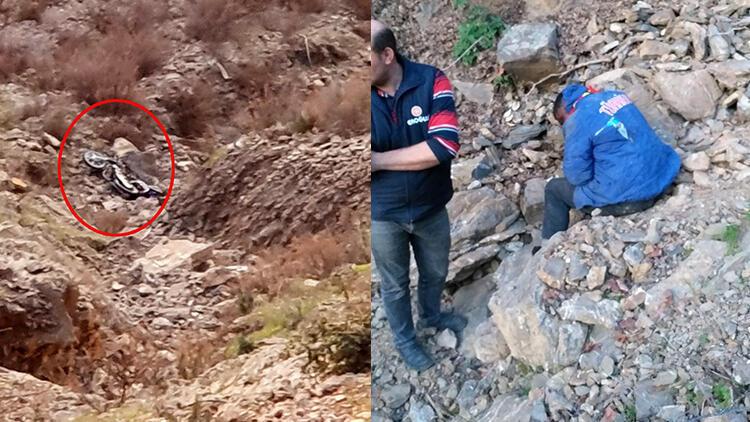 Antalya'da geceyi kaza yapıp düştüğü uçurumda geçirdi, saatler sonra kurtarıldı
