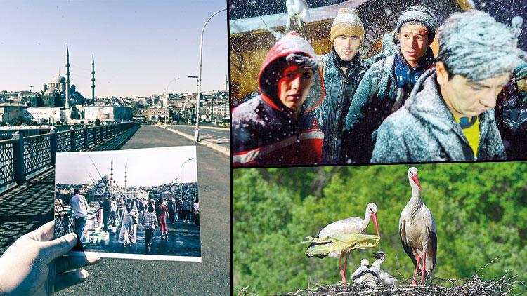 Hürriyet'e 6 ödül... 'Foto muhabirleri görsel tarih yazıyor'