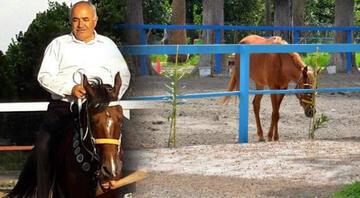 Kayıp atlarla ilgili yeni detaylar ortaya çıktı Bakamayınca 'kaçtı' ihbarı yapmışlar