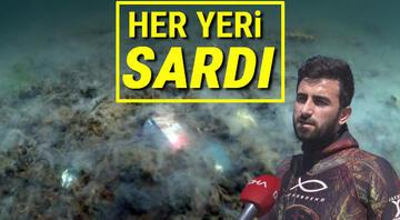 Kadıköyden daldı, Marmarada deniz dibini saran salyayı görüntüledi Kötü haberi bu sözlerle duyurdu: Sadece yüzde 5i
