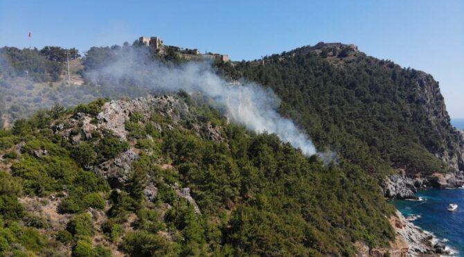 Alanya Kalesi'nin bulunduğu ormanlık alanda yangın