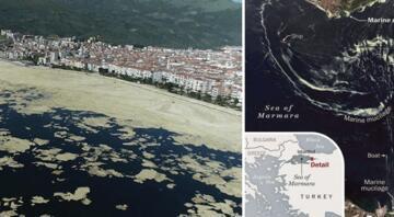 ABD basını yayınladı: Deniz salyası uzaydan böyle görünüyor