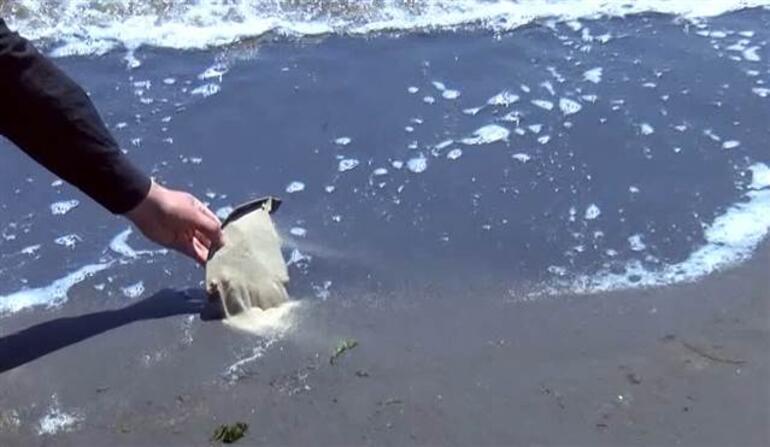Balıkesirde korkutan görüntü Müsilajın ardından... Denize girmek intihar gibi