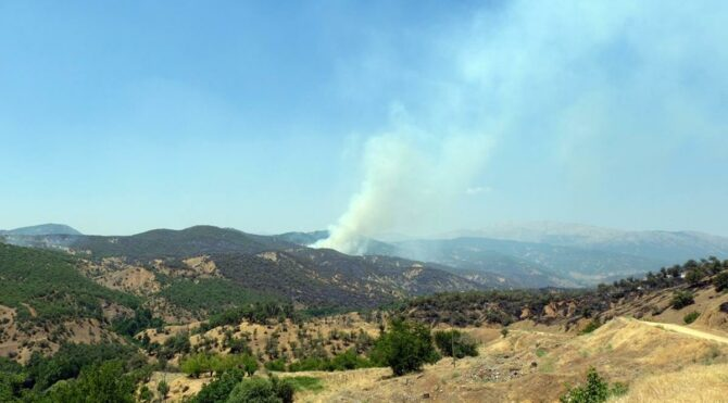 Bingöl'deki orman yangını 3 gündür devam ediyor