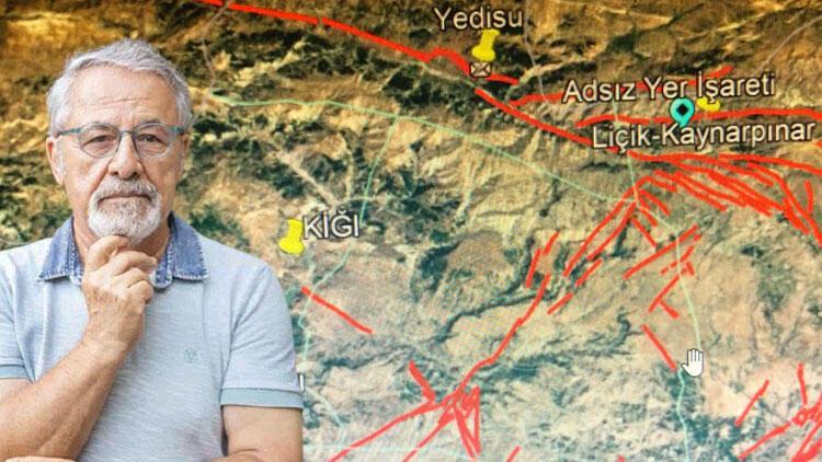 Prof. Görür'den Bingöl depremi sonrası çarpıcı açıklama! 'Sıkıntılı bölge'