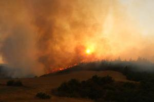 AK Parti Ankara İl Başkanlığından orman yangınlarının etkili olduğu illere yardım