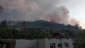 Manavgat'taki büyük yangında son durum... Cumhurbaşkanı Erdoğan bölgeye gidiyor