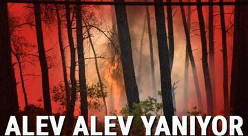 Marmaristeki orman yangınında son durum Karayolu ulaşıma kapatıldı