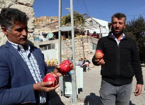 """Kayseri'de nar yedikten sonra ölen Saliha Çakır'ın """"tarım ilacı"""" sebebiyle hayatını kaybettiği kesinleşti. - Gıda Dedektifi"""