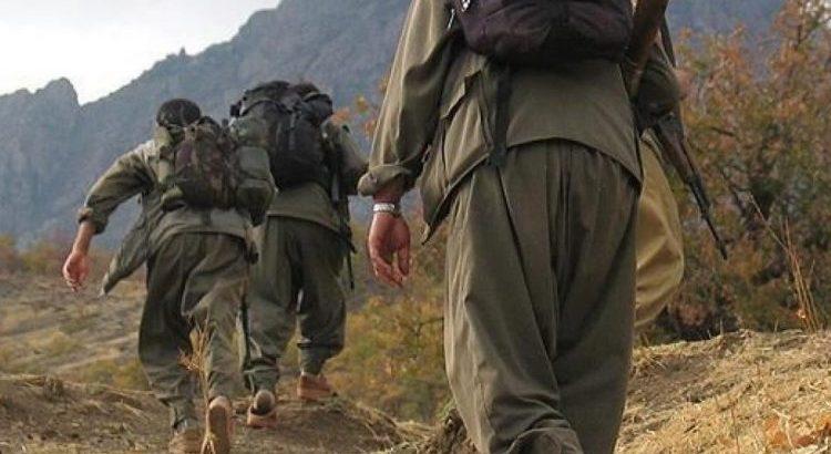 Yakalanan PKK Üyesinin Koronavirüs Testi Pozitif Çıktı
