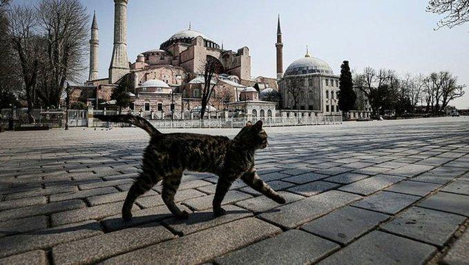 'İstanbul ve İzmir'de kısıtlamalar sürecek, Ankara'da ise…'
