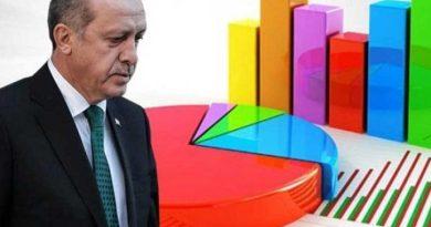 erdoğan anket
