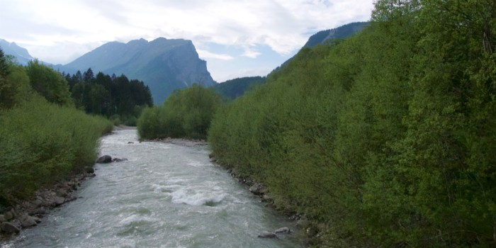 Bregenzer Wald