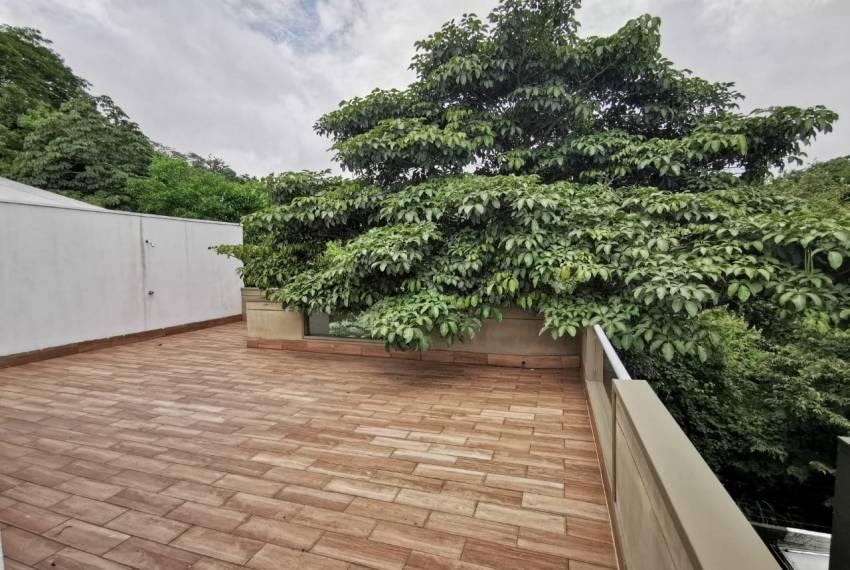 terraza arbol 4