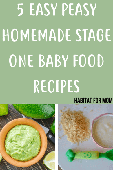 5 easy stage 1 homemade baby food recipes for babies 4 - 6 months old! These are such great beginner options you baby will love it! These are great kids meal idea for babies first foods. #babyfood #homemade #puree #kidsmeals #firstfoods #habitatformom Click to read more...