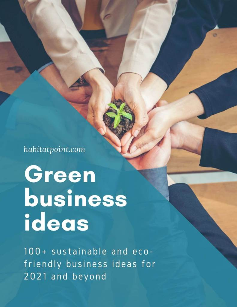 sustainable and green business ideas