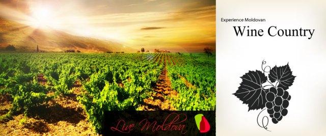 vinicola moldavia