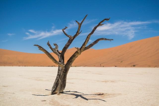namibia dicas viagem
