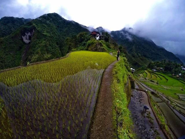 batad terraços de arroz filipina