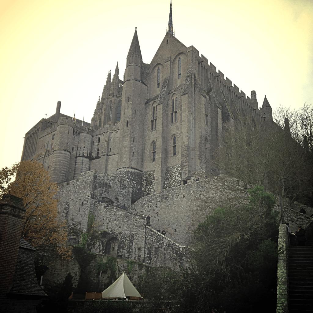 msm abbey
