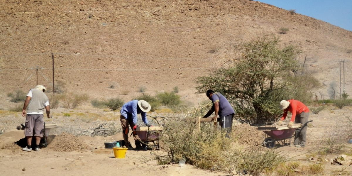 Tips For Undergraduates Interested in Archaeology