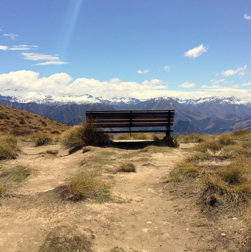 Bench at the Ben Lomond Saddle
