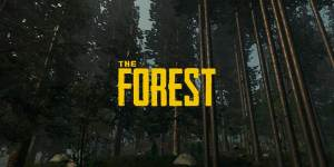 The Forest Cheats and Codes