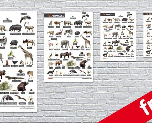 free spanish animal poster