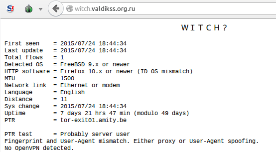 Tor Browser with WITCH? opened