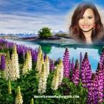 Fotomontaje de naturaleza gratis